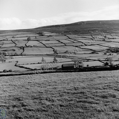 Swaledale near Reeth